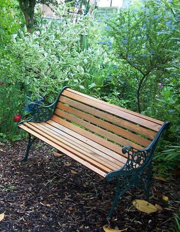 Bench in the Dingly Dell 2